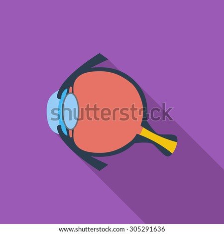 Anatomy eye icon. Flat vector related icon with long shadow for web and mobile applications. It can be used as - logo, pictogram, icon, infographic element. Vector Illustration. - stock vector