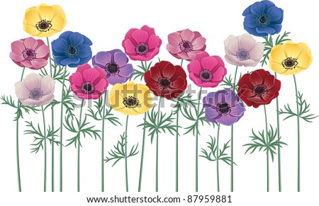Anemones - group of flowers isolated over white background - stock vector