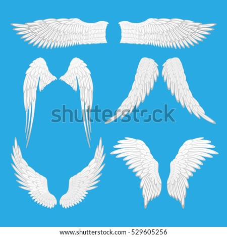 Angel wings vector illustration.