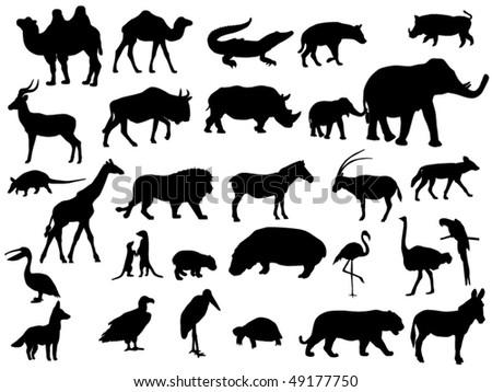 animal - stock vector