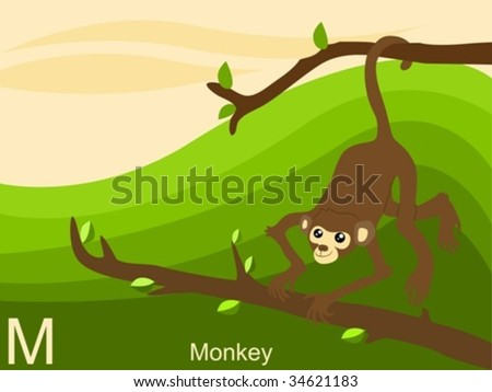 Animal alphabet flash card, M for monkey