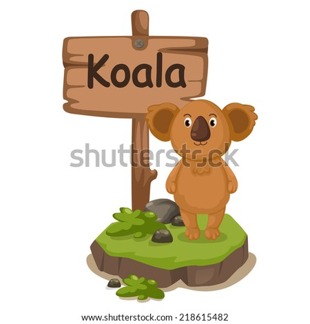 animal alphabet letter K for koala illustration vector - stock vector
