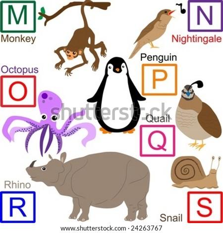 Animal alphabet, part 3 of 4 - stock vector