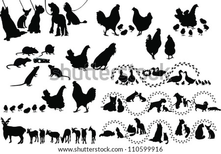 Animal birds dog cats hen duck rat goats isolated white background - stock vector
