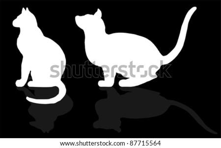 animal - CAT, vector - stock vector