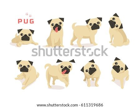 animal dog pug character vector illustration flat design