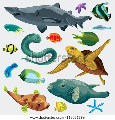Animal fish set: puffer, fish, shark, turtle, mooray eel, nudibranchs, star - stock vector