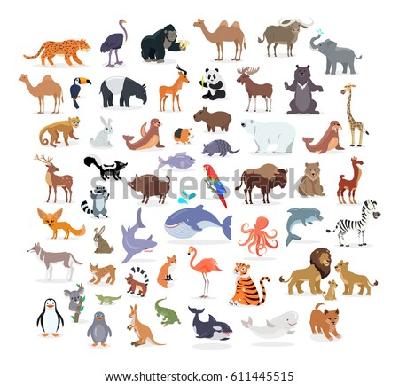 animal full length portraits collection on stock vector royalty