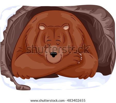 animal illustration large grizzly bear hibernating stock. Black Bedroom Furniture Sets. Home Design Ideas