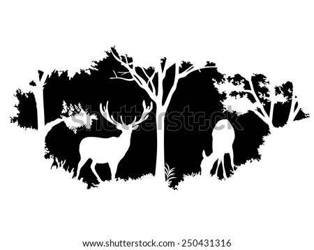animal of wildlife (deer) - stock vector