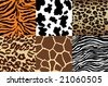 Animal Print backgrounds - stock vector