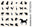animal silhouettes set - stock vector