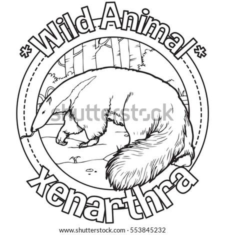 Animal Xenathra Coloring Book