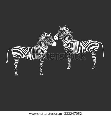 animal zebra vector illustration wild mammal white black zoo striped - stock vector