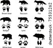 Animals and its tracks. Vector illustration - stock photo