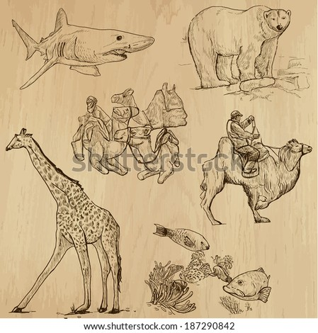Animals around the World (set no. 16) - Collection of an hand drawn illustrations. Description: Each drawing comprise of two layer of outlines, colored background is isolated. - stock vector