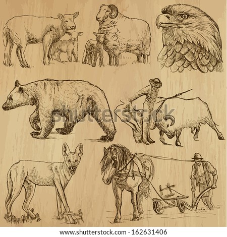 Animals around the World (set no. 8) - Collection of an hand drawn illustrations. Description: Each drawing comprise of two layer of outlines, colored background is isolated.  - stock vector