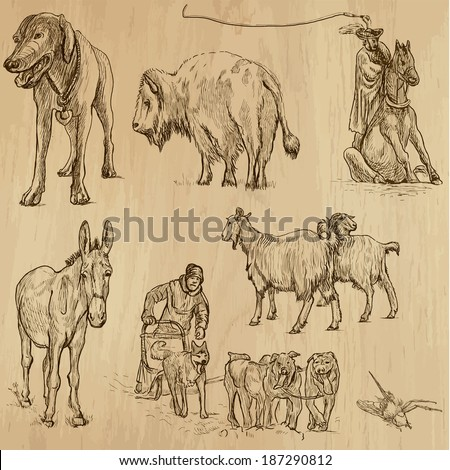 Animals around the World (set no. 9) - Collection of an hand drawn illustrations. Description: Each drawing comprise of two layer of outlines, colored background is isolated. - stock vector