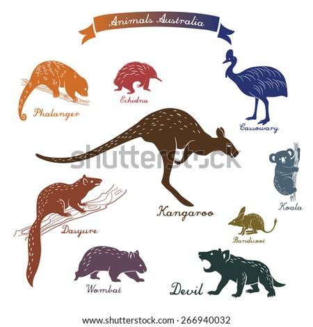 animals Australia - stock vector