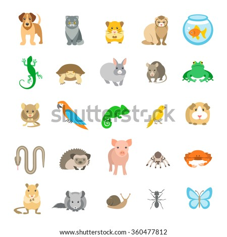 Animals pets vector flat colorful icons set. Cartoon illustrations of various domestic animals. Mammals, rodents, amphibian, insects, birds, reptiles, which people take care of at home - stock vector