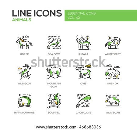 modern vector line design icons and pictograms  Horse  sea cow  impala