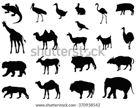 Animals set, wild animal silhouette - stock vector