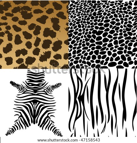 Animals skin. Vector Illustration - stock vector
