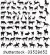 Animals vector vol_4 - stock vector