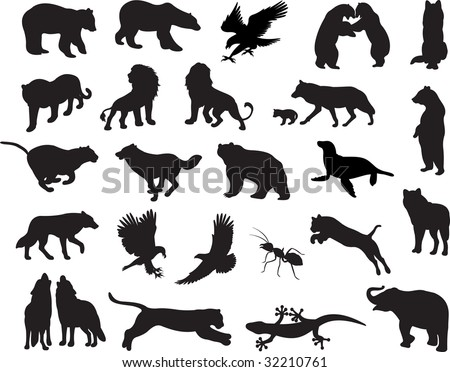 Animals vector vol_6
