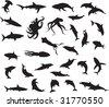 animals vectors vol_2 - stock vector