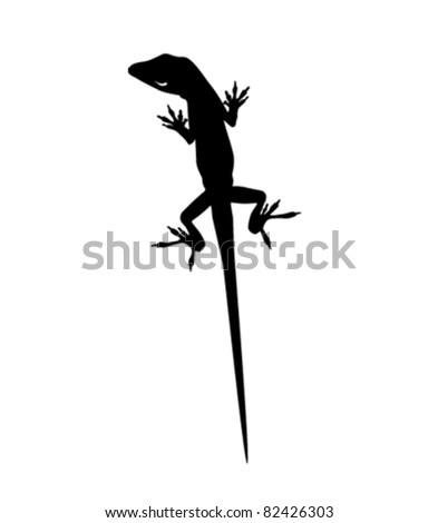anole lizard vector - stock vector