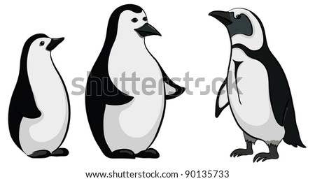 Antarctic black and white emperor penguins on white background. Vector - stock vector