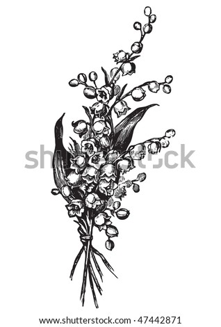 antique lily-of-the-valley engraving, scalable and editable vector illustration - stock vector