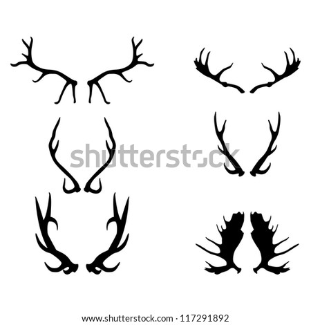 antlers, vector illustration