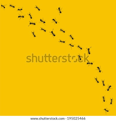Ants - stock vector