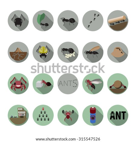 Ants icons set in flat design with long shadow. Illustration EPS10