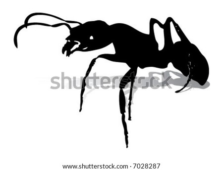 Ants Silhouette - High detail shadow separated into a different layer. - stock vector