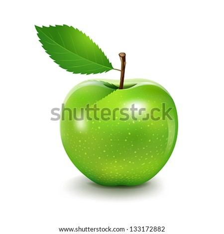 Apple and leaf, Vector illustration - stock vector