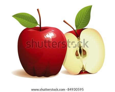 Apple Fruit, vector illustration - stock vector