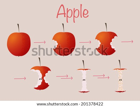Apple. Whole, bitten and eaten. With seeds and yellowed. A template for food icons. Healthy snack. Natural raw food. Delicious fruit. Hand drawn. - stock vector