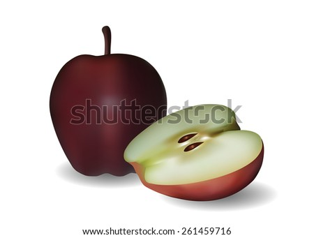 Apples isolated on a white background. EPS 10. - stock vector