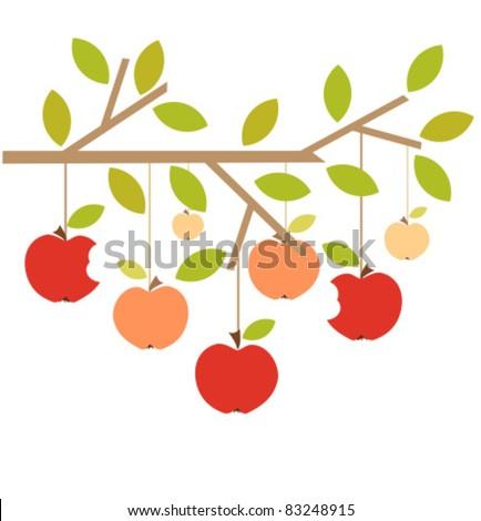 Apples on tree branch. Autumn vector illustration - stock vector