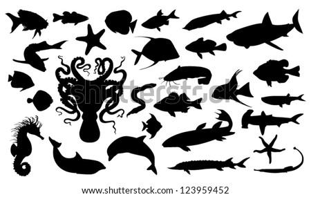 Aquatic life - stock vector