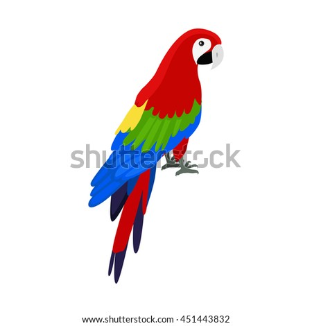 Ara parrot vector. Birds of Amazonian forests in flat design illustration. Fauna of South America. Beautiful Ara parrot on branch posters, childrens books illustrating. Isolated on white. - stock vector