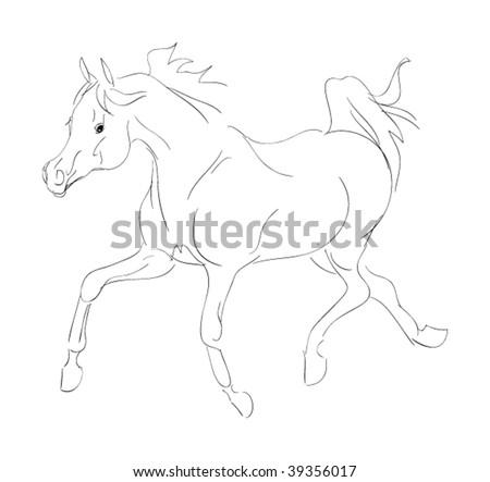 arab stallion sketch - stock vector