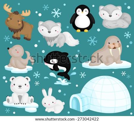 Arctic Animal Vector Set - stock vector