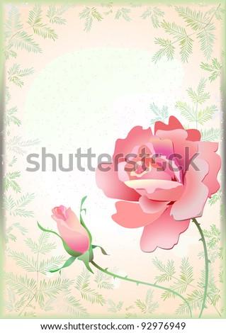 Art illustration of pink  ROSE and bud on leafy background. Pattern. Leaf. Stem. Vector. - stock vector