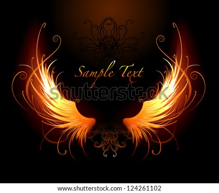 artistically painted fiery wings on a black background. - stock vector