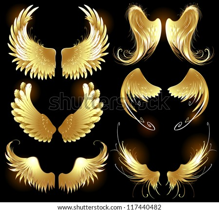 Arts painted, gold angel wings on a black background.