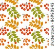 Ash berry seamless pattern. Vector illustration - stock vector